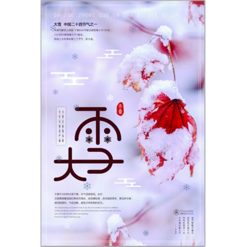简约清新二十四节气之大雪节日海报